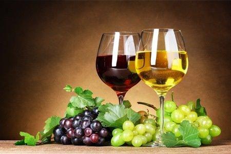 il Museo del vino più grande d'Europa