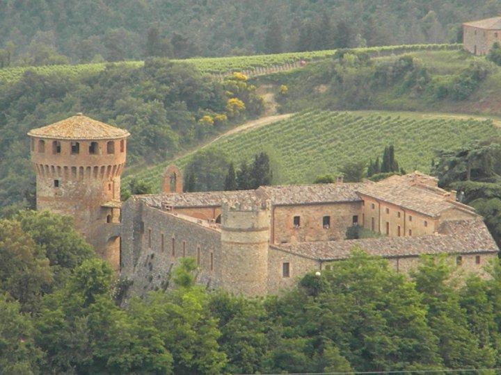 """Cervaro della Sala (Antinori), il vino bianco italiano più cercato nel mondo per """"Wine-Searcher""""."""